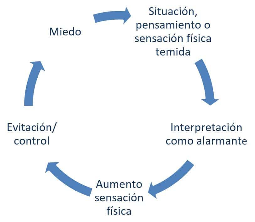Circulo vicioso de la ansiedad